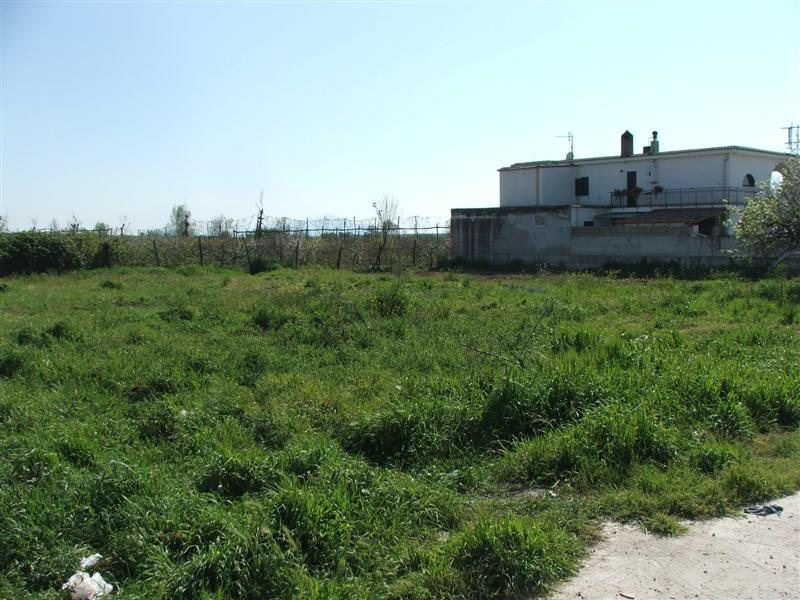 com50 – Ischitella, Terreno Pianeggiante 1000mq